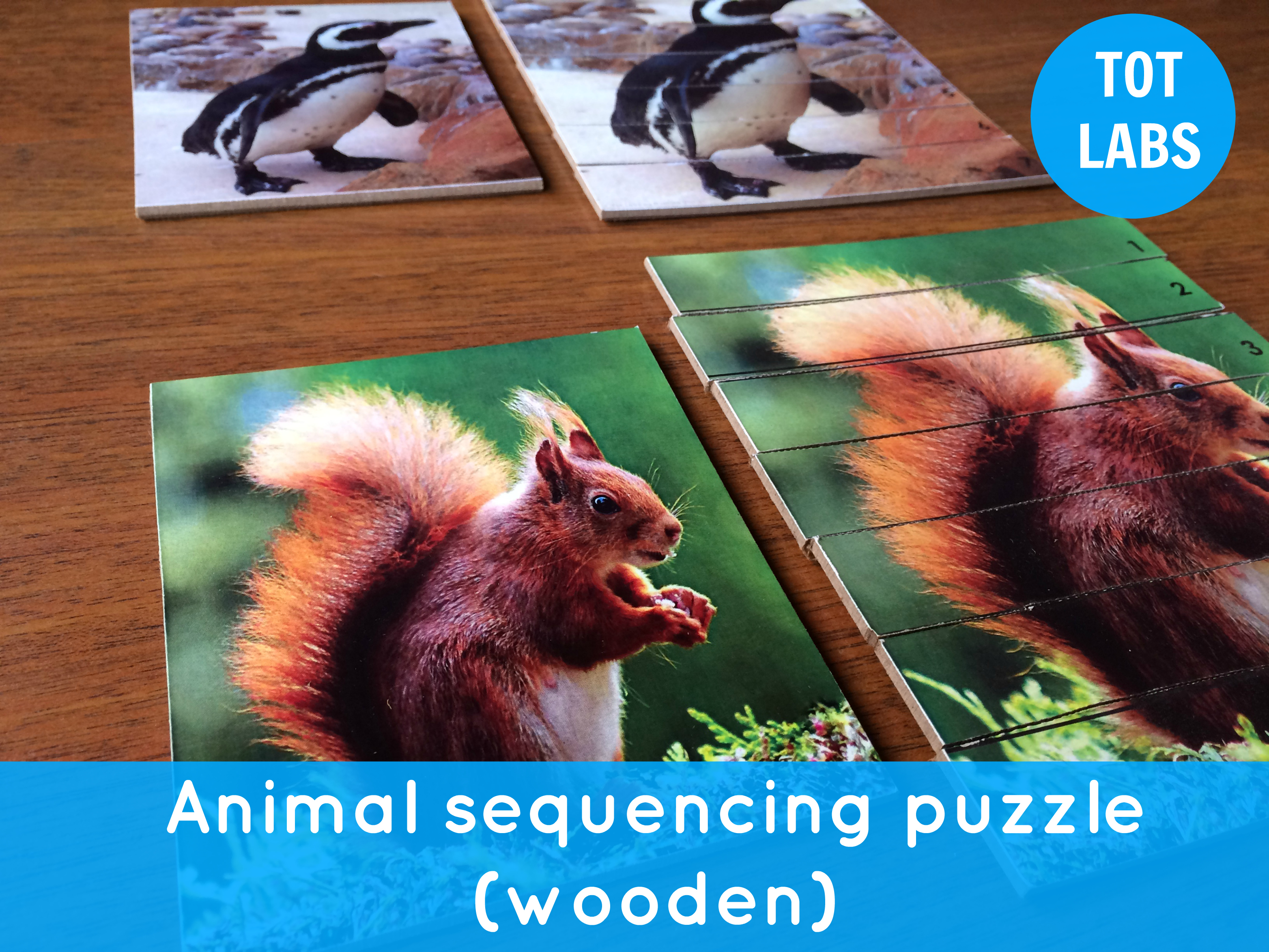 ANIMAL sequence puzzle